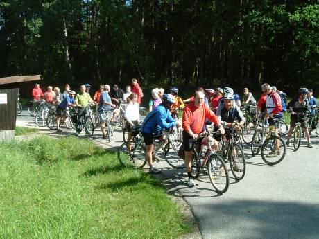 fahrrad stadler amberg